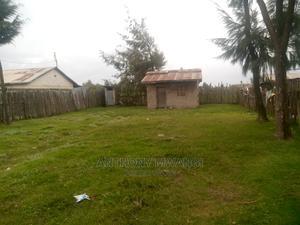 50*100 Plot | Land & Plots For Sale for sale in Nyandarua, NjabiniKiburu