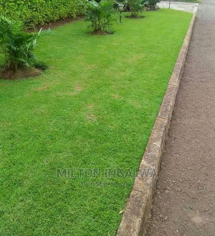 Landscaper/Team Leader (Experienced | Gardening & Landscaping CVs for sale in Karen, Nairobi, Kenya