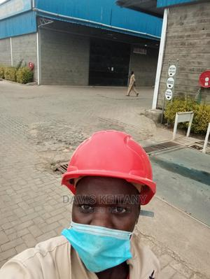 Electrical CCTV Installation Technician   Manufacturing CVs for sale in Murang'a, Makuyu