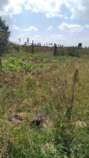200 Acres Nyandarua Gwa Kung'u    Land & Plots For Sale for sale in Nyandarua, Central Ndaragwa