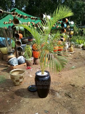 Nature Painter Landscaper | Gardening & Landscaping CVs for sale in Kajiado, Ngong