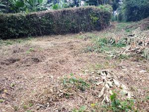Own a Plot at Banana at a Price of 7million 50*100   Land & Plots for Rent for sale in Kiambu, Banana