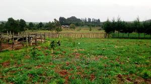 10 Acres on Sale at Kangui Gichaka | Land & Plots For Sale for sale in Nyandarua, Nyakio