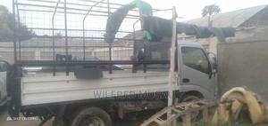 Toyota Dyna Manual Diesel | Trucks & Trailers for sale in Mombasa, Mombasa CBD