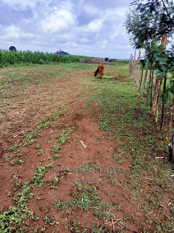 Plots for Sale in Illula Near Koilel River in Eldoret | Land & Plots For Sale for sale in Eldoret CBD, Uasin Gishu, Kenya