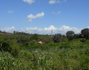 1/8 Acre Plot for Sale in Thika   Land & Plots For Sale for sale in Thika, Thika CBD