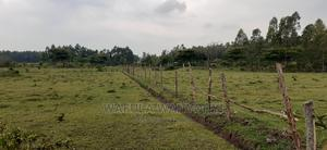 5 Acres Kimaeti | Land & Plots For Sale for sale in Bungoma, Bumula