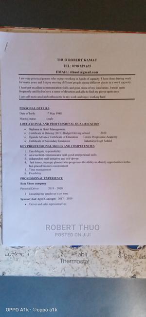 Sales Telemarketing CV | Sales & Telemarketing CVs for sale in Kiambu, Kikuyu