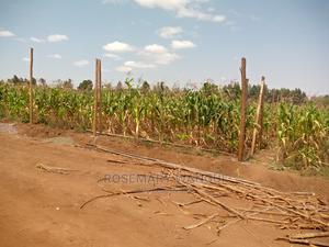 50 by 100 FOR SALE IN KAMANGU, KIKUYU   Land & Plots for Rent for sale in Kikuyu, Thogoto