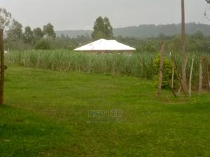 Land With Sugar Cane For Sale | Land & Plots For Sale for sale in Bungoma, Maraka