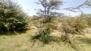 20acres for Sale in Sekenani | Land & Plots For Sale for sale in Narok, Mara