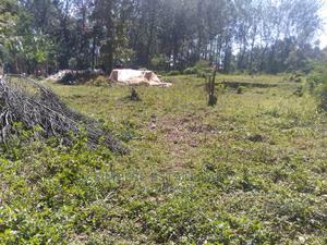 Quarter Acre in Narurumbi Bungoma | Land & Plots For Sale for sale in Bungoma, West Nalondo