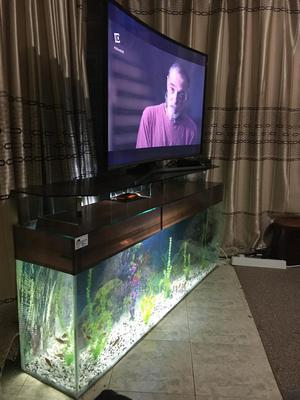 Scenic Tv Stand Aquarium | Fish for sale in Nairobi, Nairobi Central
