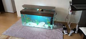 Spectacular Tv Stand Aquarium | Fish for sale in Nairobi, Kilimani