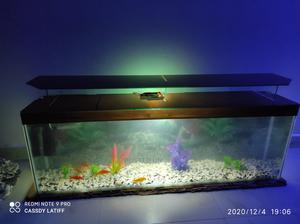 43inch TV Stand Aquarium | Fish for sale in Nairobi, Nairobi Central