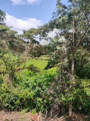 Land for Rent   Land & Plots for Rent for sale in Nairobi, Karen