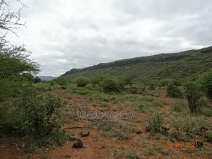 10 Acres for Farming/Irrigation in Isinya for Lease   Land & Plots for Rent for sale in Kajiado, Isinya