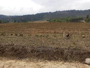 50by100 Residential Plots in Kikuyu | Land & Plots For Sale for sale in Kiambu, Kikuyu