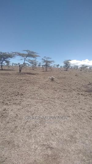 12 Acres Ngobit Laikipia | Land & Plots For Sale for sale in Laikipia Central, Ngobit