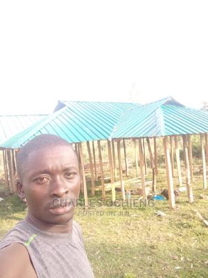 Packers and Packagers | Manual Labour CVs for sale in Homa Bay, Kanyamwa Kologi