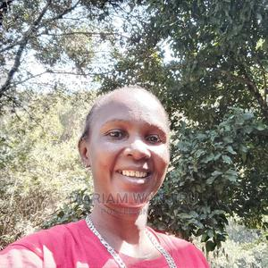 Legal Secretary   Legal CVs for sale in Kiambu, Ruaka
