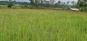 3.5 Acres Land for Sale in Kipkenyo Eldoret   Land & Plots For Sale for sale in Kapseret, Kipkenyo