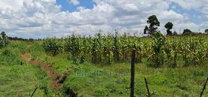 Plots for Sale in Illula After Kapsoya in Eldoret | Land & Plots For Sale for sale in Ainabkoi, Illula