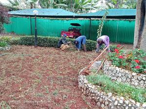 Transformation | Landscaping & Gardening Services for sale in Nairobi, Westlands