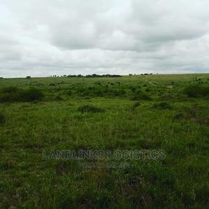 Kiambu 1000 Acres With Coffee | Land & Plots For Sale for sale in Kiambu, Kiambu / Kiambu