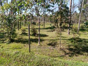 2.6 Acres on Sale Outspan-Kiambaa Area | Land & Plots For Sale for sale in Kapseret, Ngeria