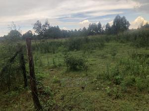 Ngeria 1/8acre   Land & Plots For Sale for sale in Uasin Gishu, Kapseret
