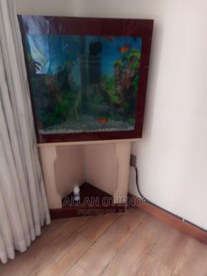 Triangular Aquarium + Wooden Stand | Fish for sale in Nairobi, Umoja