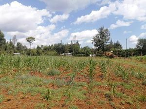 Outspan Eldoret, 1/4 Plot for Sale 800 Meters From the Highw | Land & Plots For Sale for sale in Kesses, Racecourse