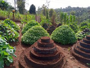 Vertical/Kitchen/Multi Storey Garden | Feeds, Supplements & Seeds for sale in Kiambu, Ruiru