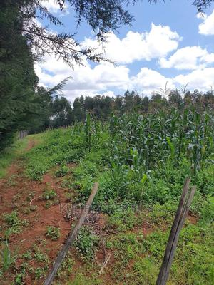 On Sale: 3 Acres at Zena Roses, Plateau.  100% Arable Or   Land & Plots For Sale for sale in Ainabkoi, Kaptagat