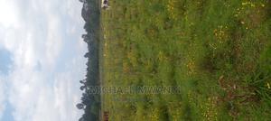 Karagoini 1 Acre 1.3M | Land & Plots For Sale for sale in Nyandarua, Gatimu