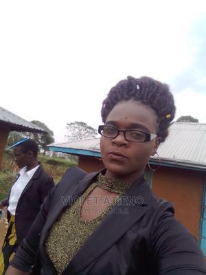Offline Car Sales Agents   Advertising & Marketing CVs for sale in Homa Bay, West Kasipul