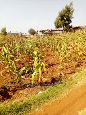 Commercial Land for Sale   Commercial Property For Sale for sale in Limuru, Ndeiya