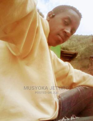 Landscaper/Team Leader (Experienced | Gardening & Landscaping CVs for sale in Nairobi, Karen