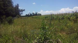 Mugunda/Ndaragwa   Land & Plots For Sale for sale in Nyandarua, Central Ndaragwa