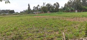 A Quarter an Acre Kabula | Land & Plots For Sale for sale in Bungoma, Kabula