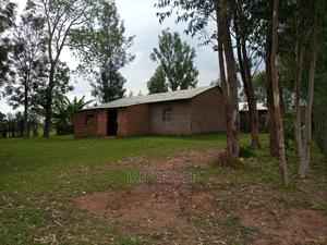 Land and House for Sale | Land & Plots For Sale for sale in Bungoma, Kabuchai/Chwele