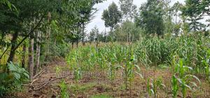 0.2 Acres for Sale in Kapsoit | Land & Plots For Sale for sale in Kericho, Kapsoit