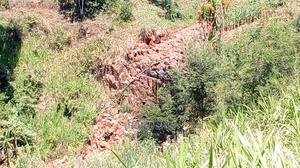 Redhill 5 Acres   Land & Plots for Rent for sale in Limuru, Tigoni