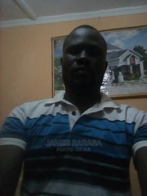 Landscaper/Team Leader (Experienced | Gardening & Landscaping CVs for sale in Busia, Nangina
