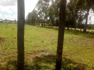 1/4 Plots for Sale in Annex,Eldoret   Land & Plots For Sale for sale in Kesses, Racecourse