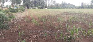 2 Acres Bukembe | Land & Plots For Sale for sale in Bungoma, Bukembe West