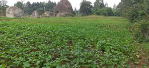 3/4 Kabuchai | Land & Plots For Sale for sale in Bungoma, Kabuchai/Chwele
