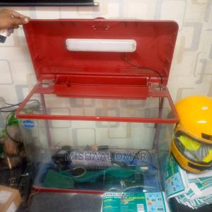 Aquarium Original | Fish for sale in Mombasa, Mvita
