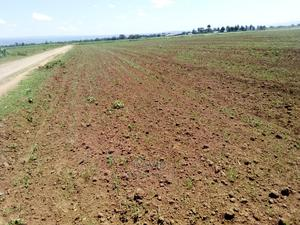 Selling 0.5 Acre Land in Kipchiria | Land & Plots For Sale for sale in Bungoma, Kimilili